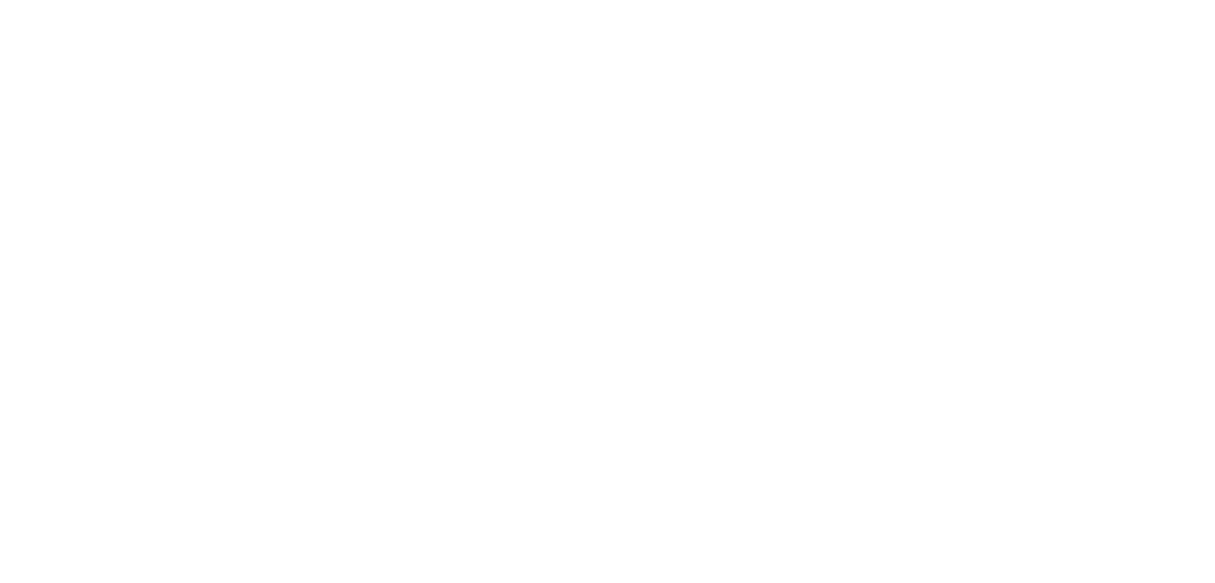 White Slider Circle